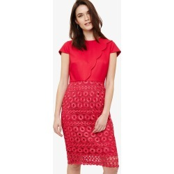 Phase Eight Marlin Lace Dress, Pink, Shift found on Bargain Bro UK from Phase Eight