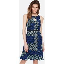 Damsel in a Dress Susanna Floral Embroidered Dress, Blue