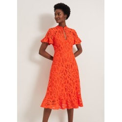 Damsel in a Dress Lulu Floral Lace Dress, Orange, Occasion Dress found on Bargain Bro UK from Phase Eight