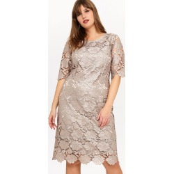 Studio 8 Rosalind Lace Dress, Metallic, Shift, Occasion Dress found on MODAPINS from Phase Eight for USD $135.95