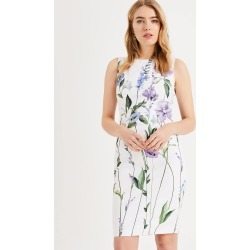 Phase Eight May Stem Flower Dress, White, Shift, Occasion Dress