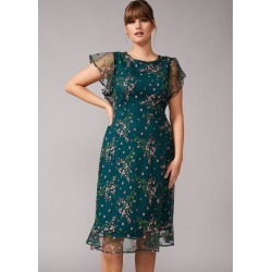 Studio 8 Aileen Floral Embroidered Dress, Green, Shift, Occasion Dress found on MODAPINS from Phase Eight for USD $123.99