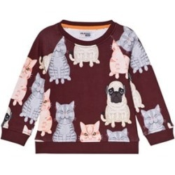 Filemon Kid Filemon Kid Windsor Wine Fat Cat and Pug Print Sweatshirt 104/110 cm