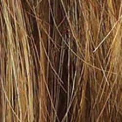 Raquel Welch Winner Wig R9F26 Mocha Foil - Large Womens Raquel Welch Wigs