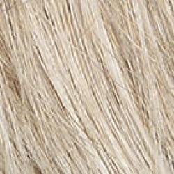Raquel Welch Winner Wig R23S+ Glazed Vanilla - Petite Womens Raquel Welch Wigs