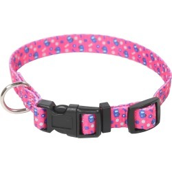 Camping Queen Pet Collar, Large found on Bargain Bro Philippines from Camping World for $4.99