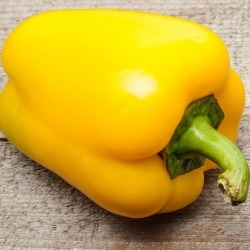 Sweet Pepper Seeds - Canary Bell, Vegetable Seeds, Eden Brothers