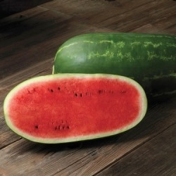 Watermelon Seeds - Cal Sweet, Vegetable Seeds, Eden Brothers