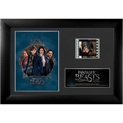 Fantastic Beasts and Where to Find Them S2 Mini Film Cell