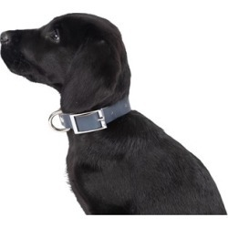Mog & Bone Genuine Leather Dog Collar Navy Extra Small found on Bargain Bro India from house.com.au for $7.56
