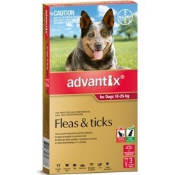 Advantix Tick and Flea Treatment for Large Dogs 10-25kg Pack of 3