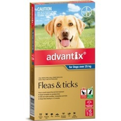 Advantix Tick and Flea Treatment for Extra Large Dogs over 25kg Pack of 6