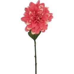 """Bloom Room 28"""" Dahlia Stem Dark Pink"""