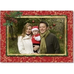 Holiday Card: Warmest Holiday Greetings