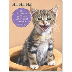 Birthday Card: Cat Years! Happy Birthday found on Bargain Bro India from leanintree.com for $1.95