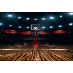 "Basketball Court Sport Arena Wallpaper Mural by Limitless Walls | Small 5'5"" W x 4'3"" H 