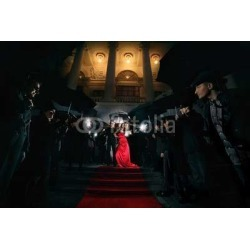 Woman In Red Dress On The Red Carpet Photos Of Paparazzi Wallpaper Mural by Limitless Walls | Standard Canvas Fabric | Small 5�