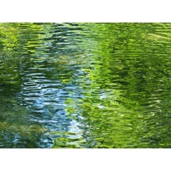 Water Texture, Green And Blue Reflections On Lake Water Surface Wallpaper Mural by Limitless Walls | Standard Canvas Fabric | Sm