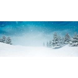 """Snow Covered Calm Winter Landscape At Snowfall Wallpaper Mural by Limitless Walls 