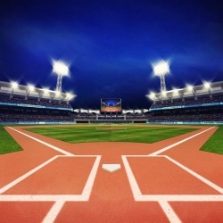 Modern Baseball Stadium With Fans And Green Grass Wallpaper Mural by Limitless Walls | Standard Canvas Fabric | Small 5�5� W found on Bargain Bro India from limitless walls for $161.15