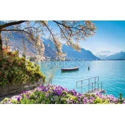 Flowers, Mountains And Lake Geneva In Montreux, Switzerland Wallpaper Mural by Limitless Walls | Standard Canvas Fabric | Small