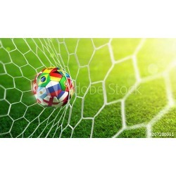 """Soccer Ball In Goal - Russia 2018 Wallpaper Mural by Limitless Walls 