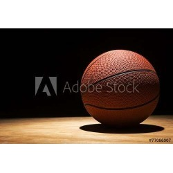 """Basketball On Hardwood 2015 Wallpaper Mural by Limitless Walls 