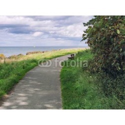 """Summer Countryside Morning,northern Ireland Wallpaper Mural by Limitless Walls 