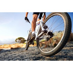 """Mountain Bike Trail Wallpaper Mural by Limitless Walls 