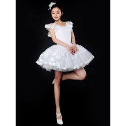 Ballet Dance Costumes Round Neck Sleeveless Ballerina Costume found on Bargain Bro Philippines from Milanoo.com Ltd for $45.99