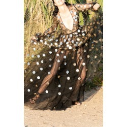 Valentino Sequined Polka-Dot Tulle Gown found on Bargain Bro Philippines from Moda Operandi for $17900.00