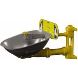 Bradley Wall Mount, Plastic Bowl, Eye and Face Wash Station 1/2 I