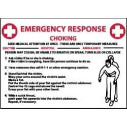 NMC 10x14 Rigid Plastic Chock Emer Response Sign M458RB