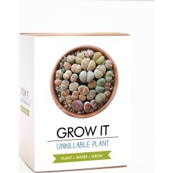 Grow It Unkillable Plant Seeds