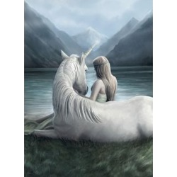 Unicorn Connection - Anne Stokes