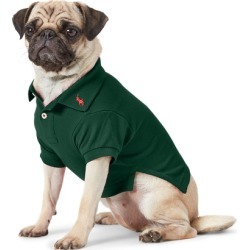 Ralph Lauren Cotton Mesh Dog Polo Shirt in College Green - Size M found on Bargain Bro Philippines from Ralph Lauren for $40.00