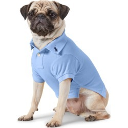 Ralph Lauren Cotton Mesh Dog Polo Shirt in Harbor Island Blue - Size L found on Bargain Bro Philippines from Ralph Lauren for $40.00