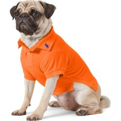 Ralph Lauren Cotton Mesh Dog Polo Shirt in Sailing Orange - Size XS found on Bargain Bro Philippines from Ralph Lauren for $40.00