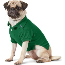 Ralph Lauren Cotton Mesh Dog Polo Shirt in New Forest - Size XS found on Bargain Bro Philippines from Ralph Lauren for $40.00
