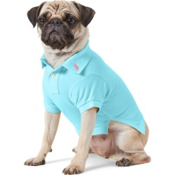 Ralph Lauren Cotton Mesh Dog Polo Shirt in French Turquoise - Size S found on Bargain Bro India from Ralph Lauren for $40.00