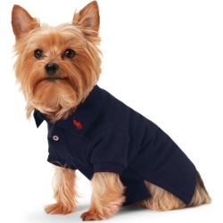 Ralph Lauren Cotton Mesh Dog Polo Shirt in French Navy - Size M found on Bargain Bro Philippines from Ralph Lauren for $40.00