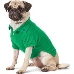 Ralph Lauren Cotton Mesh Dog Polo Shirt in Billiard - Size S found on Bargain Bro Philippines from Ralph Lauren for $40.00