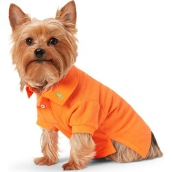 Ralph Lauren Cotton Mesh Dog Polo Shirt in Resort Orange - Size L found on Bargain Bro Philippines from Ralph Lauren for $40.00