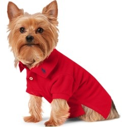 Ralph Lauren Cotton Mesh Dog Polo Shirt in RL 2000 Red - Size S found on Bargain Bro Philippines from Ralph Lauren for $40.00