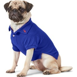Ralph Lauren Cotton Mesh Dog Polo Shirt in Heritage Royal - Size S found on Bargain Bro Philippines from Ralph Lauren for $40.00