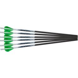 Proflight Arrows - 6/PK