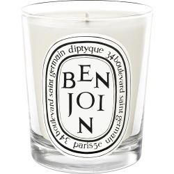 Diptyque Benjoin Scented Candle 190g found on Bargain Bro UK from Space NK UK