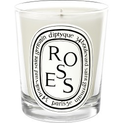 Diptyque Roses Scented Candle found on Bargain Bro UK from Space NK UK