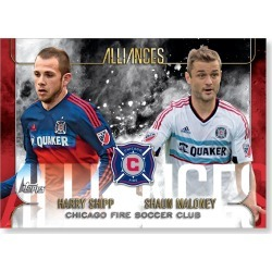 Chicago Fire Soccer Club MLS Apex Alliances Poster - # to 49