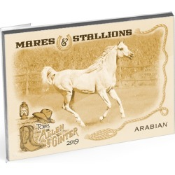 2019 Topps Allen & Ginter Baseball Oversized Mares and Stallions Complete Set (15 Cards) Gold Ed. - # to 10